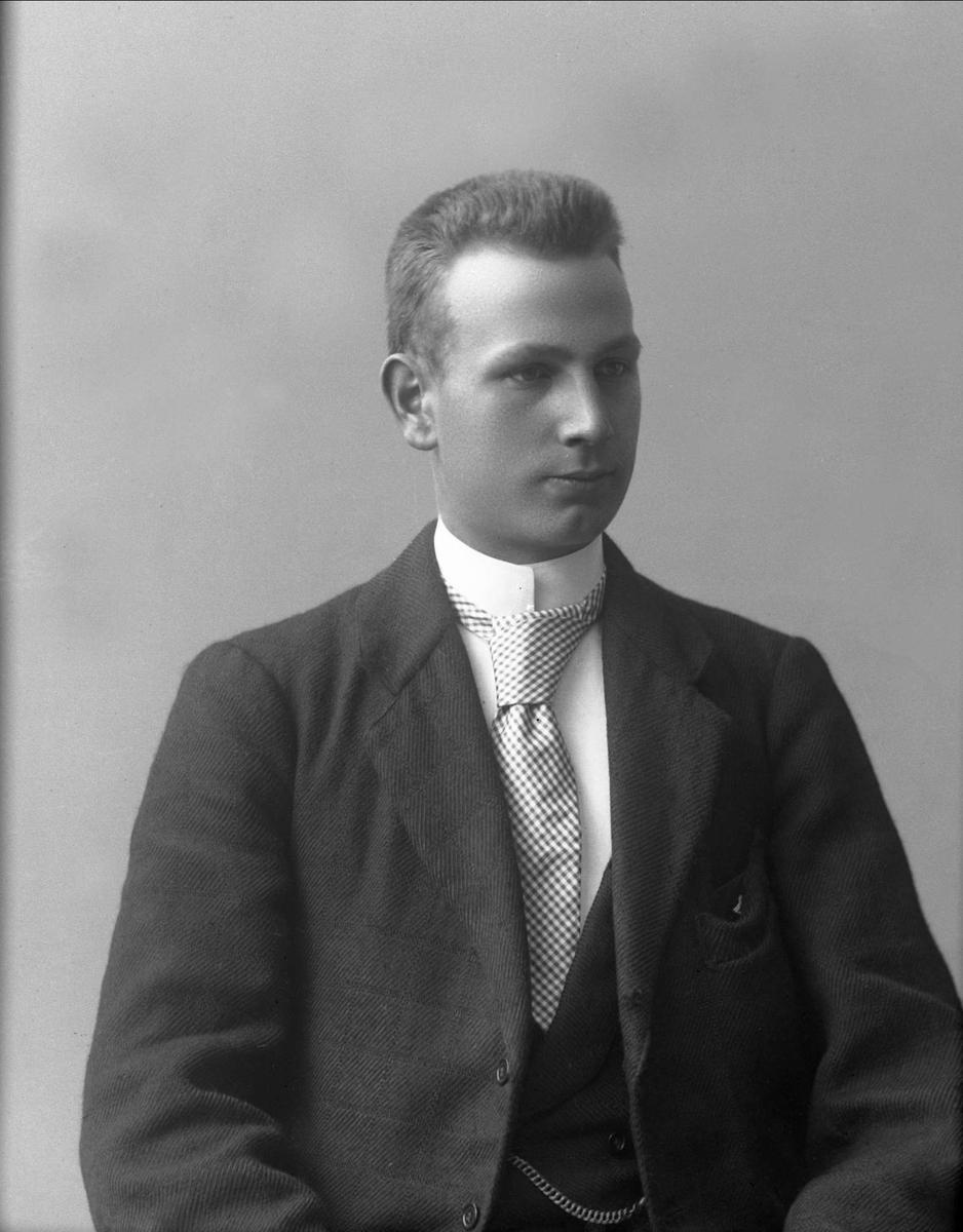 Portrett, skuespiller Sverre Dahl.