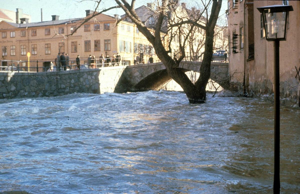 Fyrisån och Dombron i samband med kraftig vårflod i Uppsala mars 1959