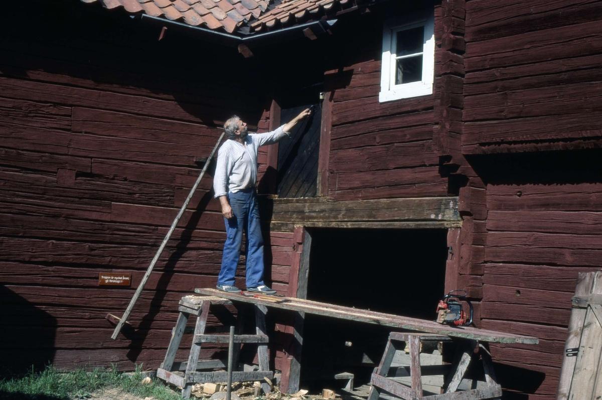 Bengt Ahlström restaurerar drängkammaren på friluftsmuseet Disagården, Gamla Uppsala 1985