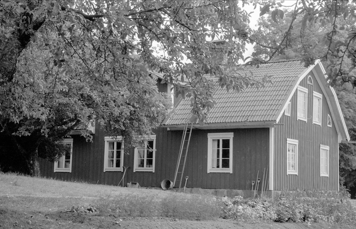 Mangårdsbyggnad och jordkällare, Lytta 1:3, Bälinge socken Uppland 1976
