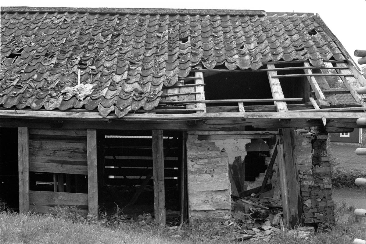 Vy från norr över Vattholma 5:20, Vattholma, Lena socken, Uppland 1978