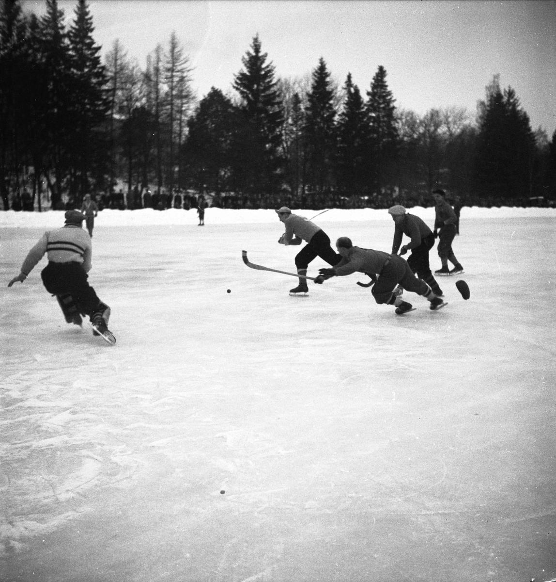Bandy - IF Vesta - IFK Uppsala, Studenternas Idrottsplats, Uppsala