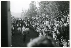 Arrangement på Halvdanshaugen og Hadeland Folkemuseum med bo