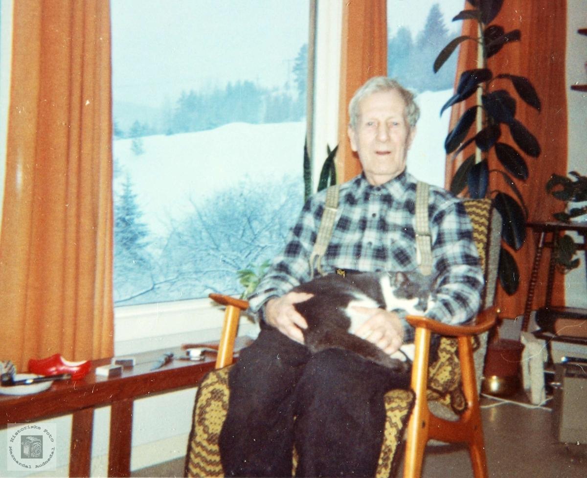 Bestefar med pus i godstolen på Smedsland i Grindheim.