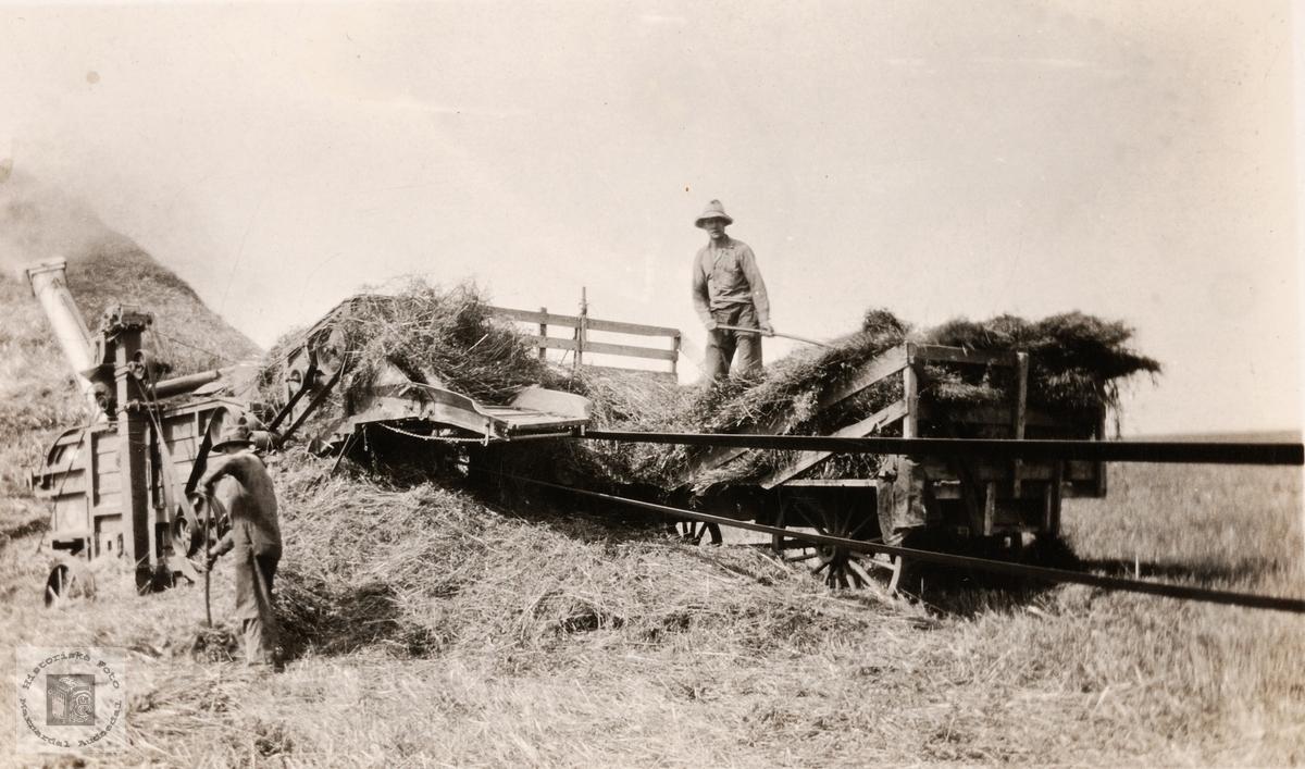 Torleif Helle tresker korn i Amerika. Konsmo.
