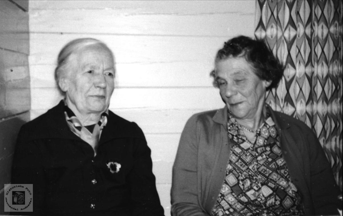 Portrett av Astri Sundbø gift Åsan og Guri Li gift Saudland.