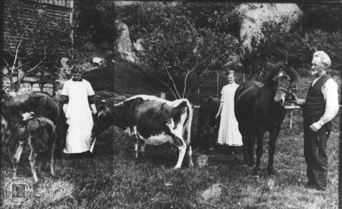 Søstre og far med bufe og hest, Halse i Mandal.