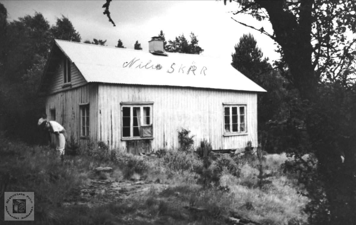 Øygarden på Skårsheia i Øyslebø.