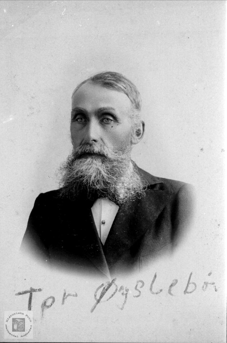 Portrett av Thor Olson Øyslebø.