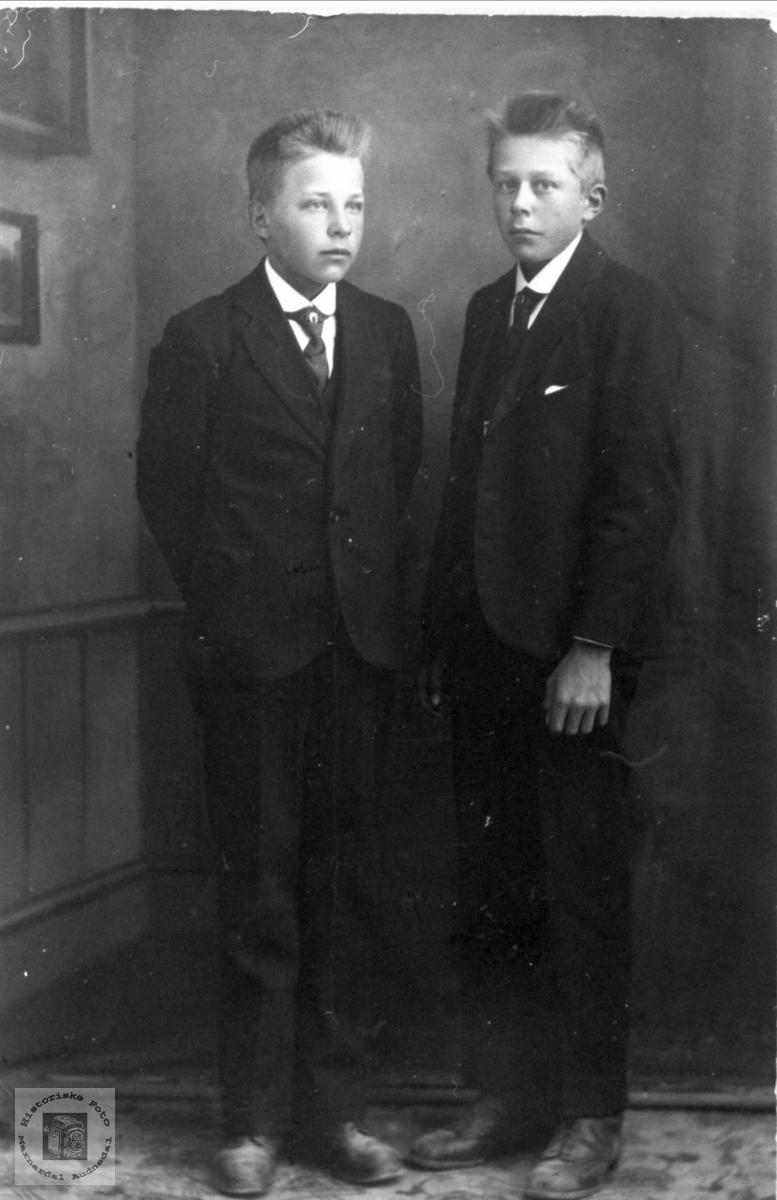 Brødrene Simon og Beint Finsådal, Øyslebø.