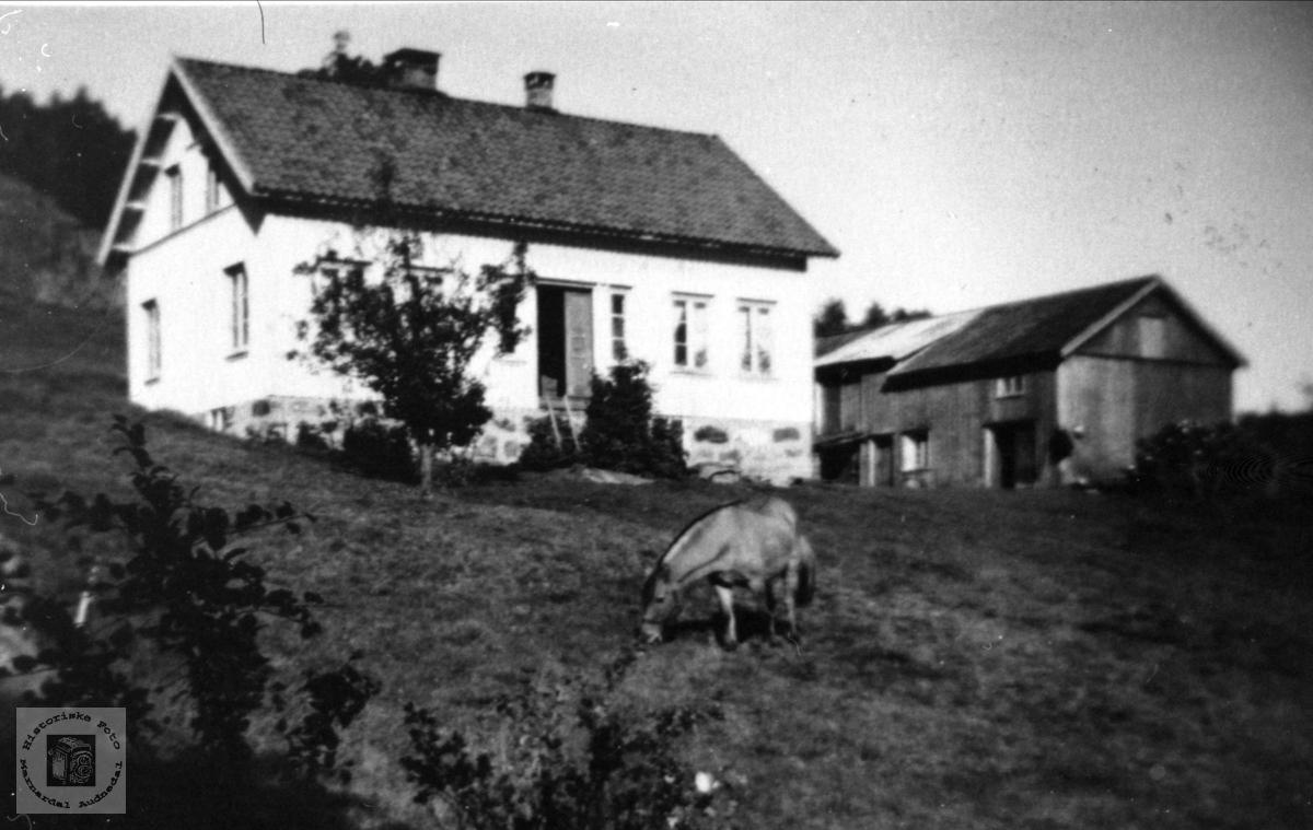 Ausland i Øyslebø.