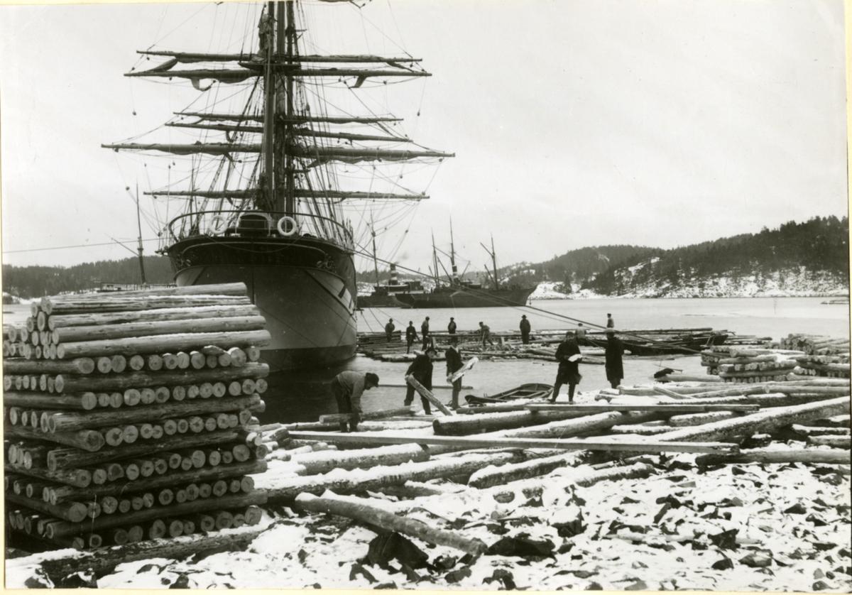 Bark 'Dorothy' (b.1894) ved lasting og lossing av tømmer