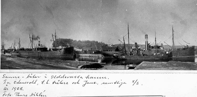 """Text på kortet: """"Sanne-båtar i Uddevalla hamn. T.v. Odensvold, t.h. trålare och Jane, samtliga s/s. År 1908. Foto Thore Nihlén""""."""