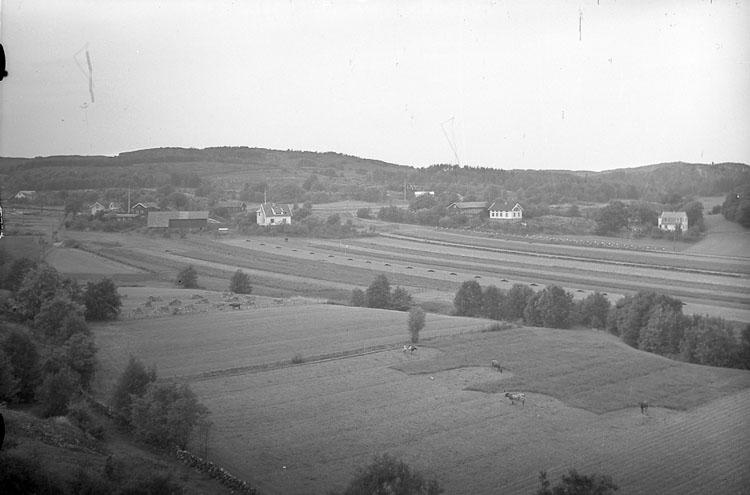 """Enligt AB Flygtrafik Bengtsfors: """"Djupvik fr. berget Bohuslän""""."""