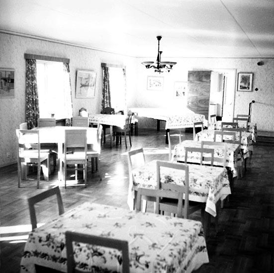 """Enligt notering: """"Barnkolonien på Stenebynäs juli 1955""""."""