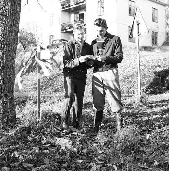 """Enligt notering: """"Bohusläningens och U.I.S. Söndagsorientering vid (Gustafsberg? 13-11-55""""."""