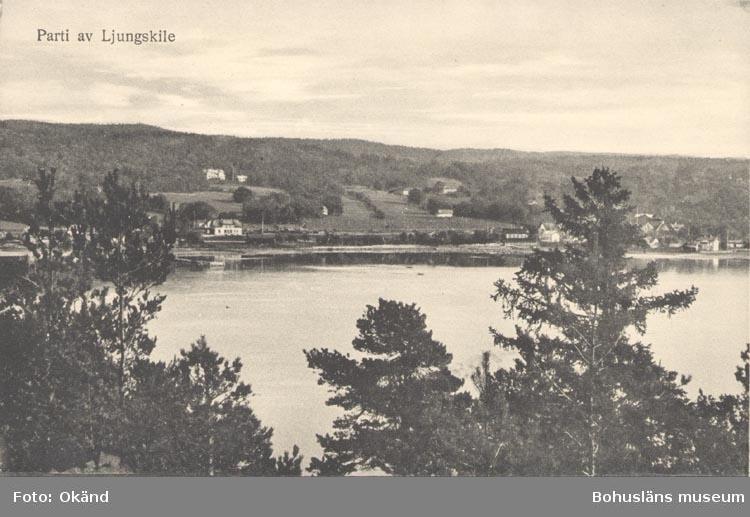 """Tryckt text på kortet: """"Parti av Ljungskile"""". """"Förlag: M. Johanssons Bokhandel, Ljungskile""""."""