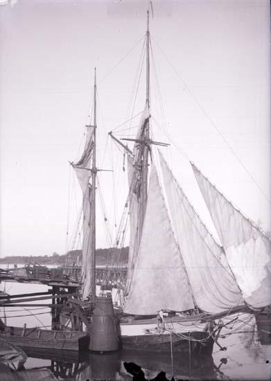"""Enligt text som medföljde bilden: """"Venersborg Hamnen 21/5 1902."""""""