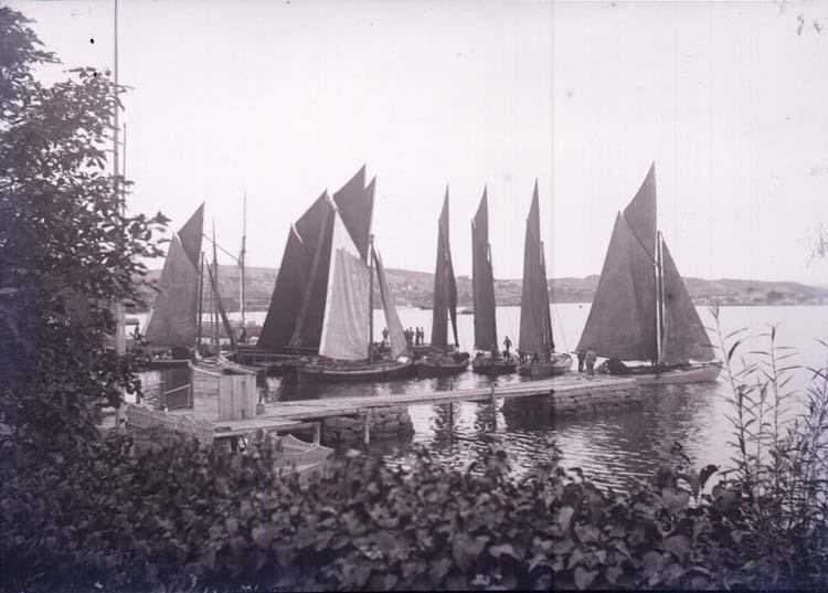 """Enligt text som medföljde bilden: """"Lysekil, Garnbåtar vid ångbåtsbryggan. Sept. 02."""