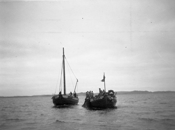 Snörpvadsfiske på Marstrandsfjorden
