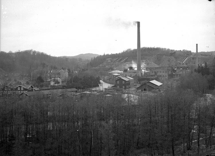 """Enligt fotografens noteringar: """"Munkedals fabrik. obs. med 2 skorstenar."""""""