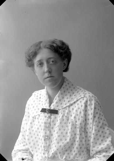 """Enligt fotografens journal nr 2 1909-1915: """"Rydén, Fröken Göteborg""""."""