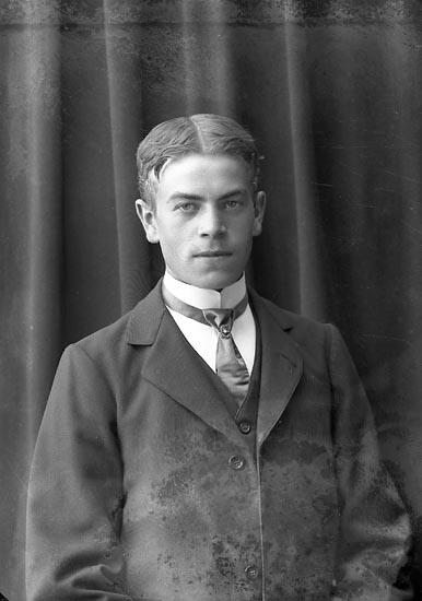 "Enligt fotografens journal nr 2 1909-1915: ""Larsson, Robert Anrås, J-da""."