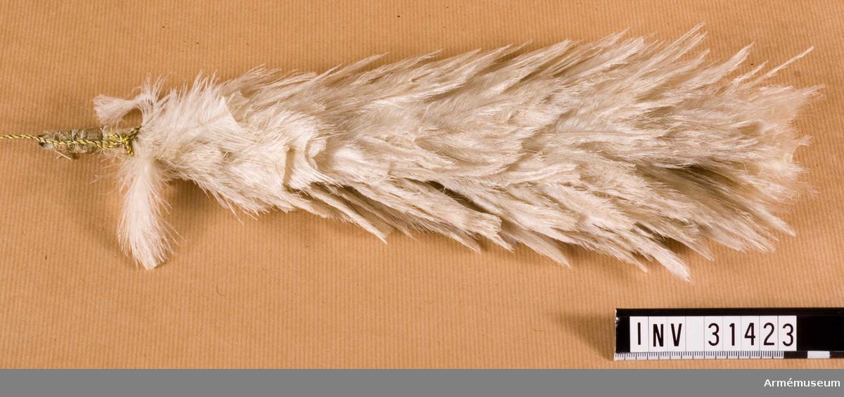 Grupp C I. Ur uniform för manskap vid Livregementets dragonkår; 1815-1823. Består av kollett, ägiljett, byxor, skärp, mössa, tschakå, plym, kordong, pompong, vapenplåt, fjällband, knapp, knapp, sölja, halsduk, kartusch, kartuschrem, sabeltaska, rem t sabeltaska, koppel, handrem, stövlar, sporrar.