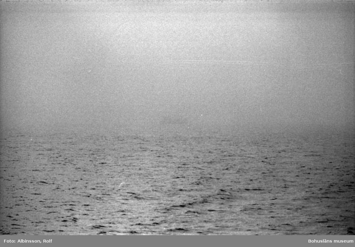 """Enligt fotografens noteringar: """"Dimman tätnar.""""  Fototid: 1996-03-06."""