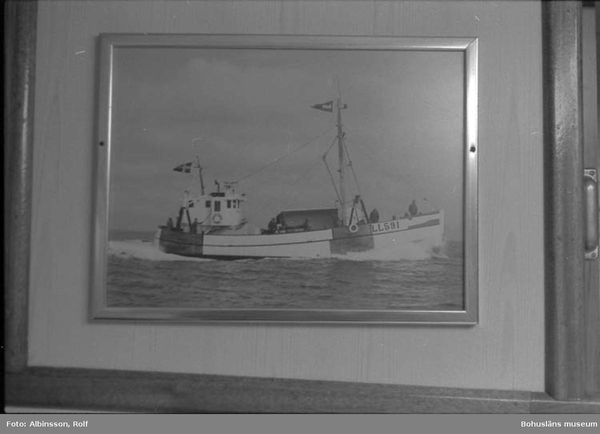 """Enligt fotografens noteringar: """"Foto på Äran i skansen.""""  Fototid: 1996-04-03.  1996-04-04.  1996-04-05."""