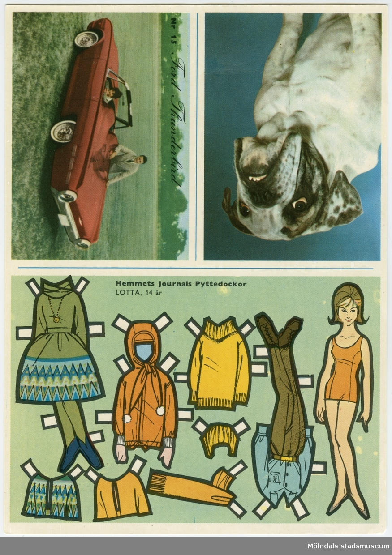 """Ark med pappersdocka och kläder, samt två samlarkort: 1962 års sportbilar, """"Ford Thunderbird"""", samt Engelsk bulldogg.Dockan föreställer en flicka, """"Lotta, 14 år"""", med brun frisyr, iklädd underkläder och skor. På baksidan finns texter kring det som avbildats på framsidan; hund, bil och om klippdockan: """"Lotta är dotter till faster Anna, som ni blev bekanta med i Hemmets Journal nr 8. Lotta är fjorton år och skolflicka. Det är en sportig ung dam, som åker skidor och skridskor på vintern och simmar på sommaren. Den här veckan har vi mest tänkt på att ge henne trevliga sportkläder, för hon har fått lov av sina föräldrar att resa till fjällen i vår, och då behövs det ju en hel del. En rolig kjol i trevligt tjockt tyg, en vindtygsjacka för långturen på fjället och en härlig skiddräkt med fina långbyxor. Lite jackor och blusar har hon också fått av sin mamma och fråga är om hon inte blir en av de mest välklädda flickorna på den här resan. Nästa vecka får ni ett ark med ännu mer kläder åt vår kära Lotta."""""""