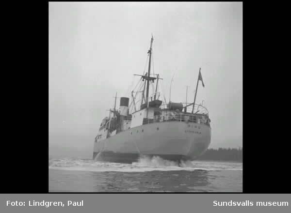 """Fartyget """"S/S Ring"""" på grund vid Fläsian."""