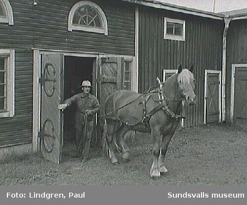 Gränsgatan 9 (f. d. Gränsgatan 5). 1927 köpte Karl Gustaf Lindvall stalldörrarna med smide från konsul Gregor Wikströms fastighet vid Esplanaden.