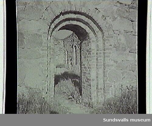 SuM-foto016071