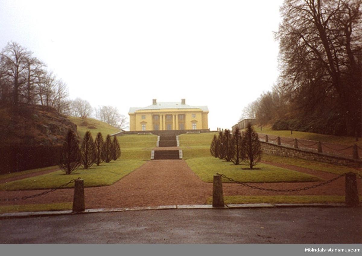 """Norra trädgården sedd nedifrån """"tvärskeppet"""", cirka 1993."""