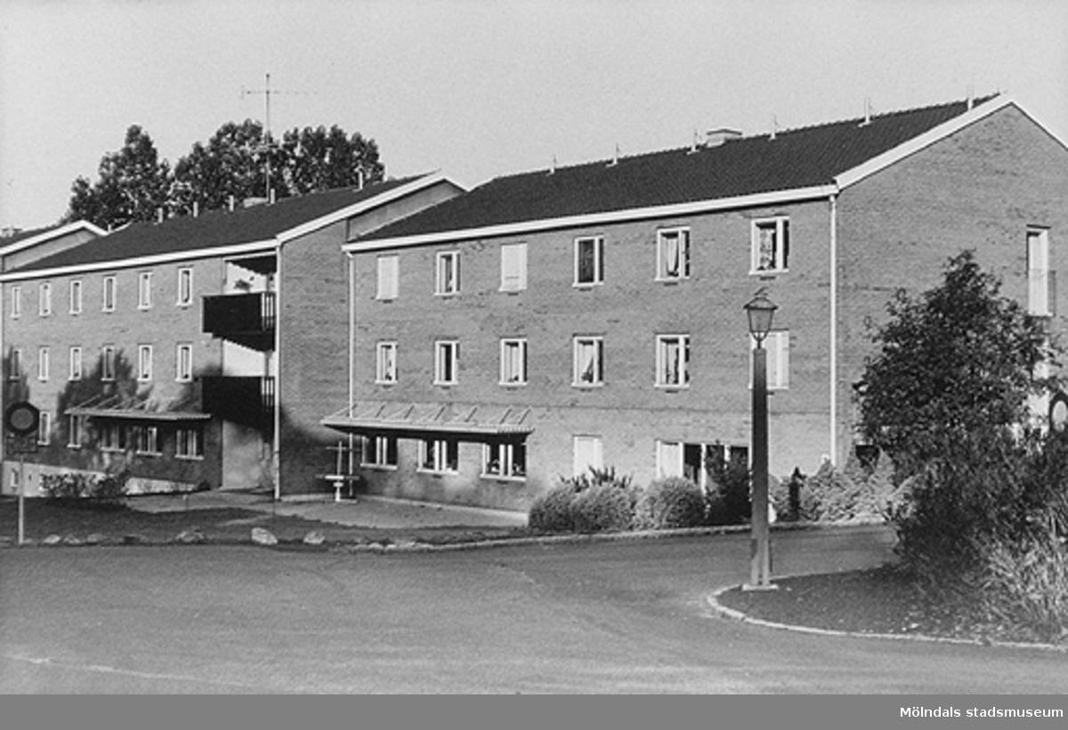 Lackarebäckshemmet, början av 1950-talet.