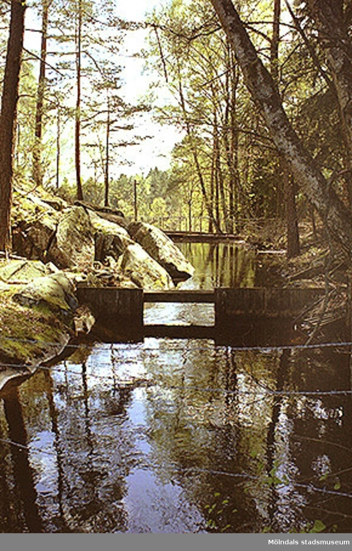Vattenkanal från Gravsjön till vattendämmet norr om Djupedala kraftverk, sedd från norr, maj 1998.