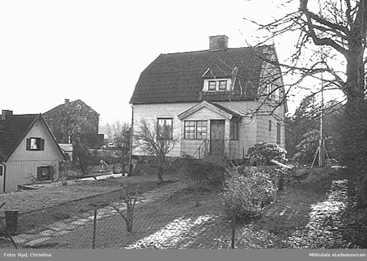 Pantern 15. Matildebergsgatan 29.