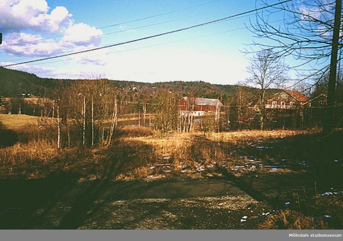 I bakgrunden ser man en röd lada och tillhörande hus, mars 1994.