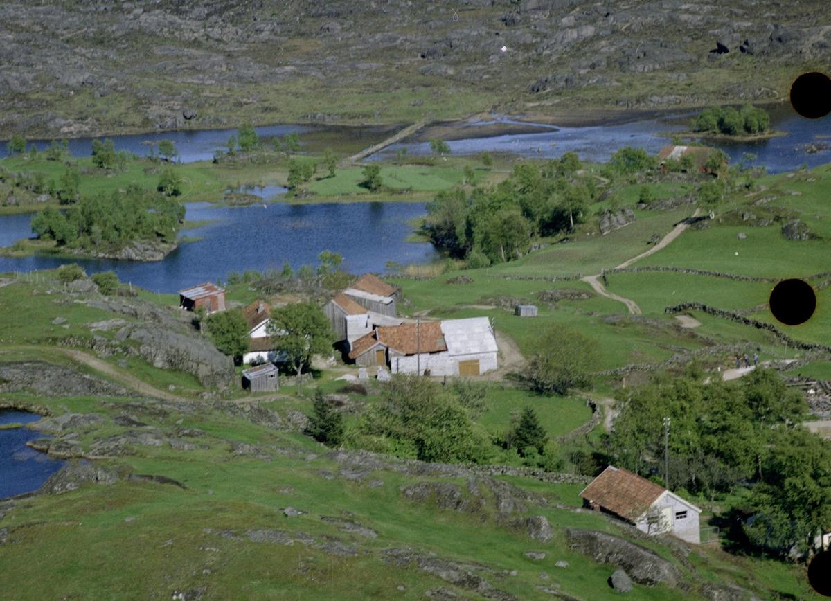 Veshovda