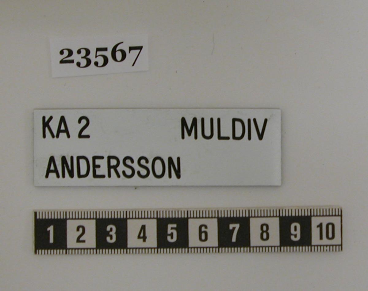 """Namnbricka i plast med vit bakgrund och svart text. På brickan står på översta raden """"KA 2 MULDIV"""" och på andra raden """"ANDERSSON"""". Texten är graverad. Namnbrickan saknar bygel för fäste i uniform."""