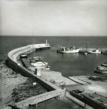 Hamnen sedd från sjöfartsmuseets bryggtak. Yttre delen med piren. Foto N Nilsson juni 1962. Skåne, Malmöhus län, Jonstorps socken, Svanshall.