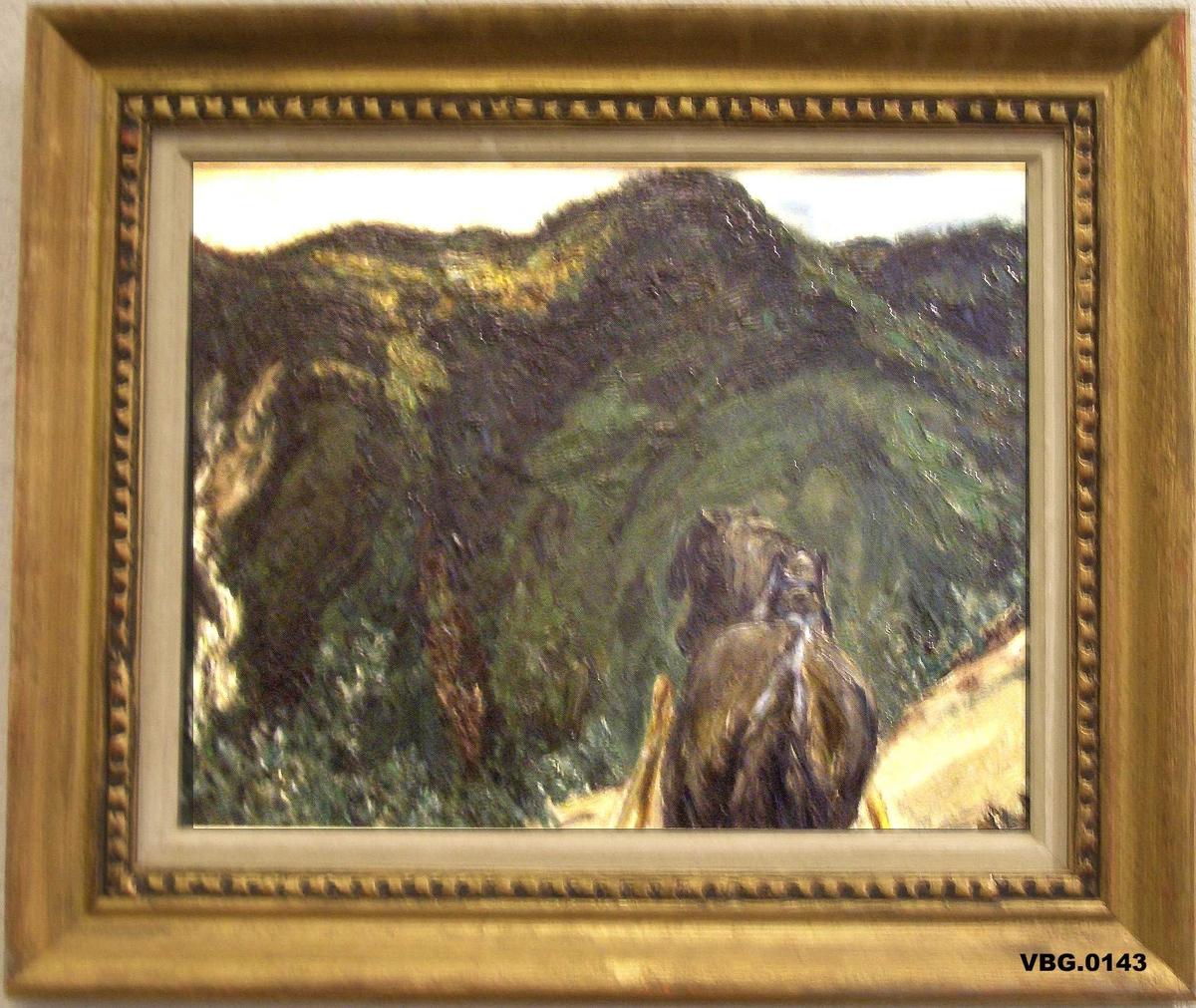 Landskap, fjell, hest