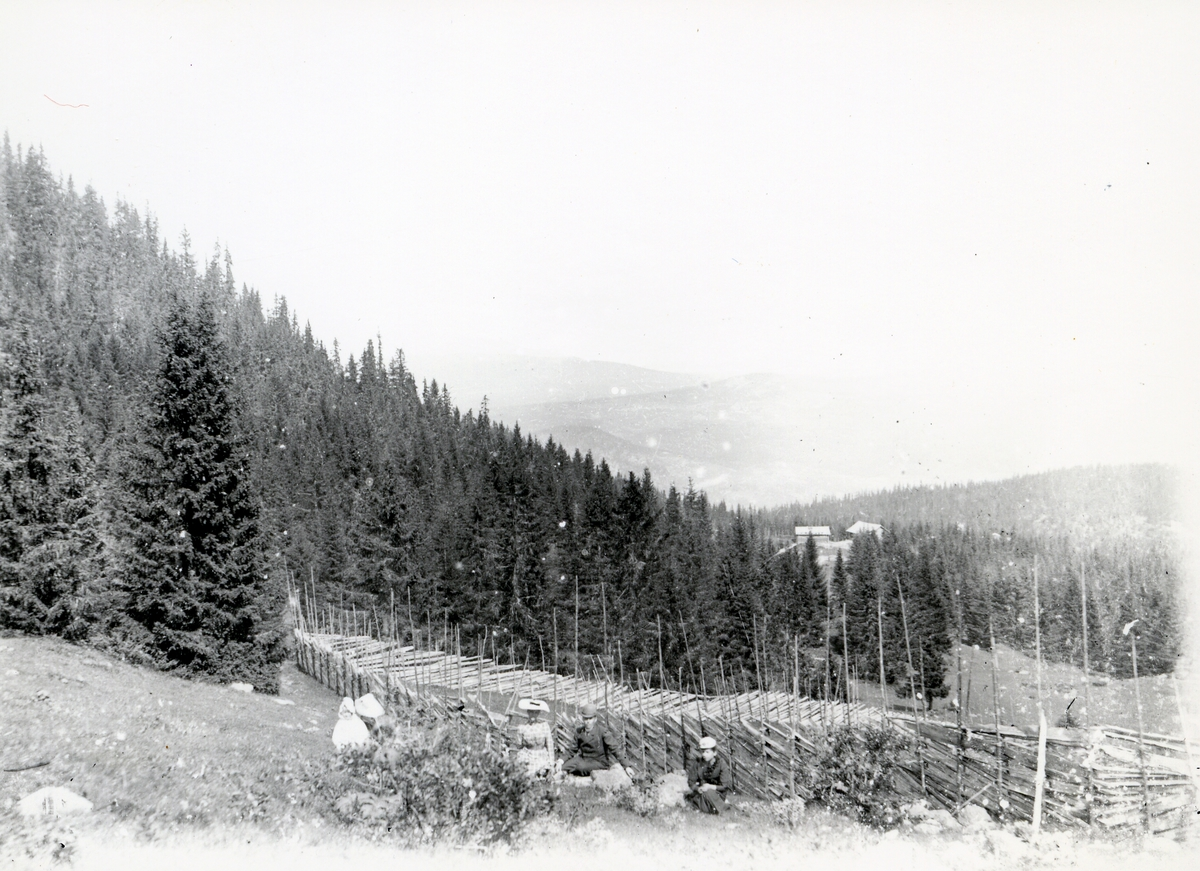 Gruppe mennesker foran skigard