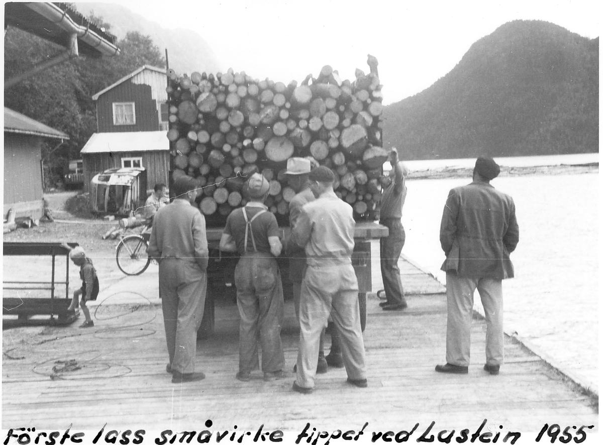 Første lass småvirke tippet ved Lastein, Dalen, Tokke, Telemark, 1955