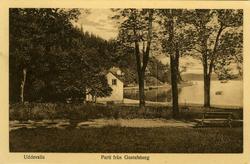 """Text till bilden: """"Uddevalla. Parti från Gustafsberg""""."""