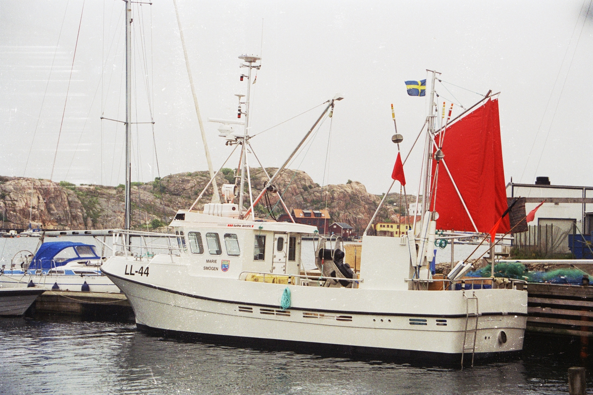 LL 44 Marie III