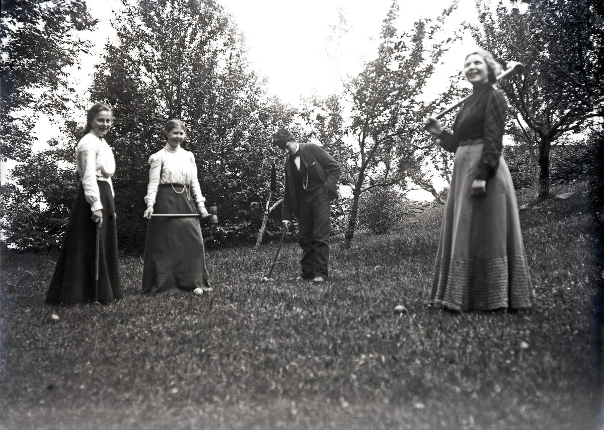 Landskap  - Gruppebilde.