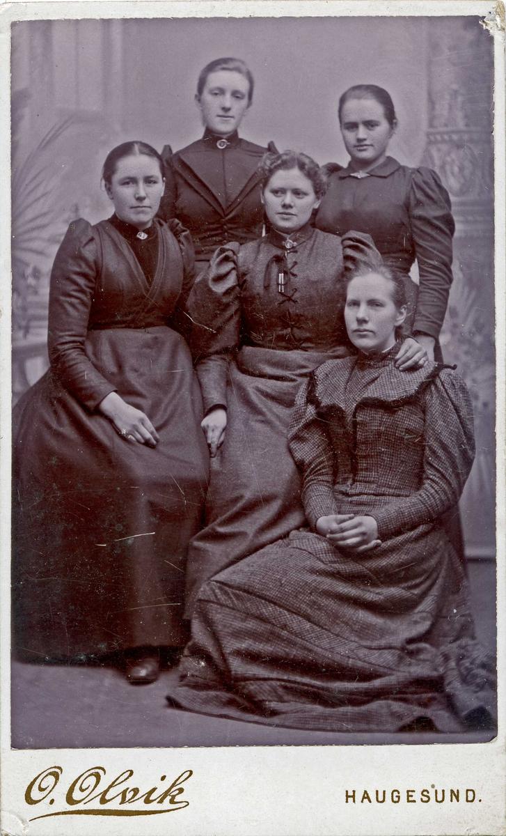 Gruppebilde - Frk Berthe Weddings syskole 1893.