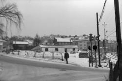 """Text till bilden: """"Smörbräckevägen med Axelssons Handelsträd"""